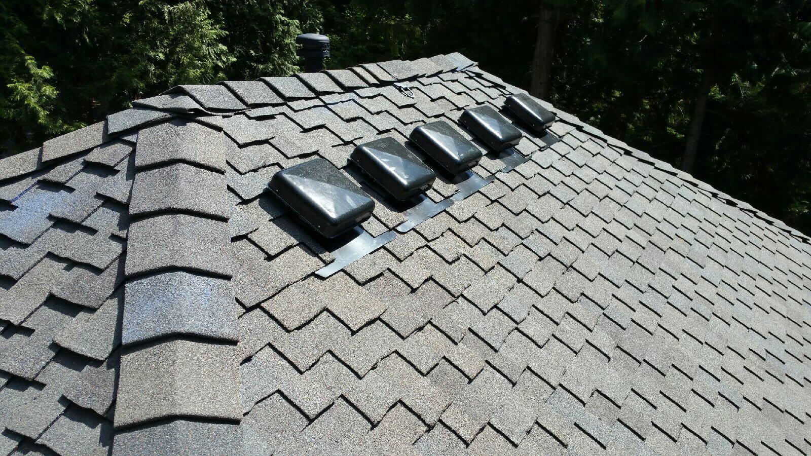martha lake roofing